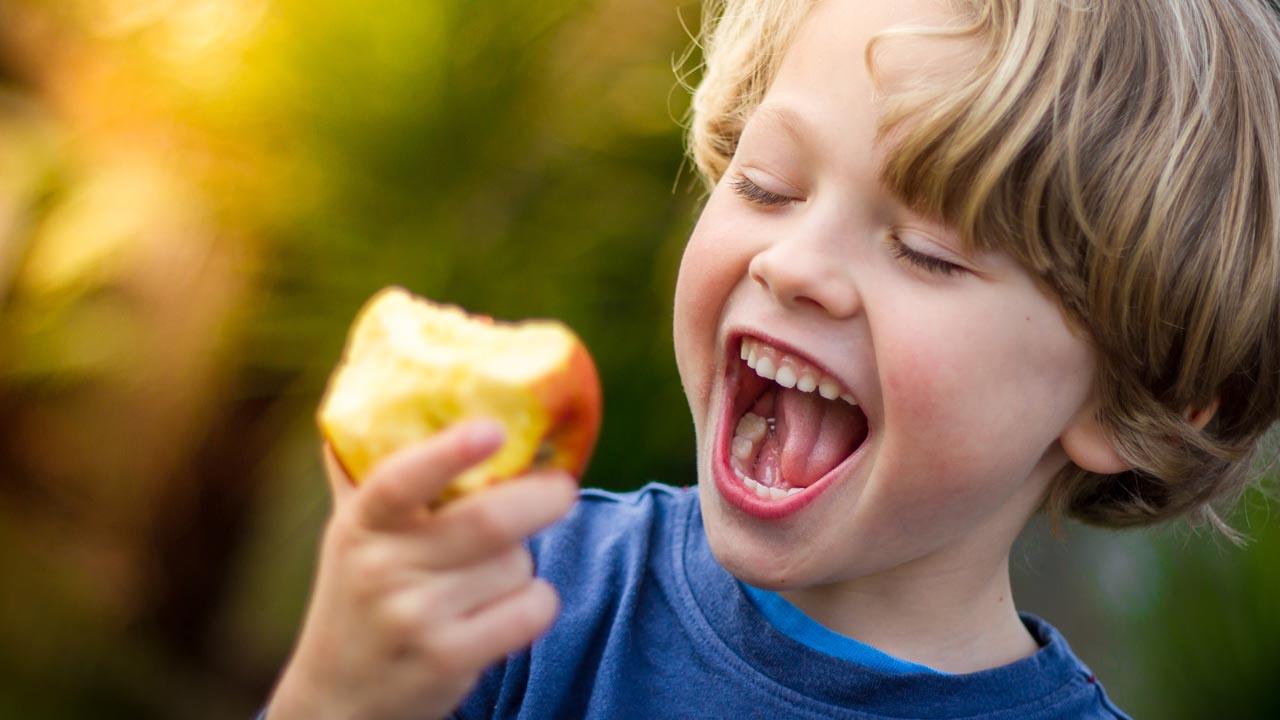 Wie viele Bakterien befinden sich auf einem Apfel?