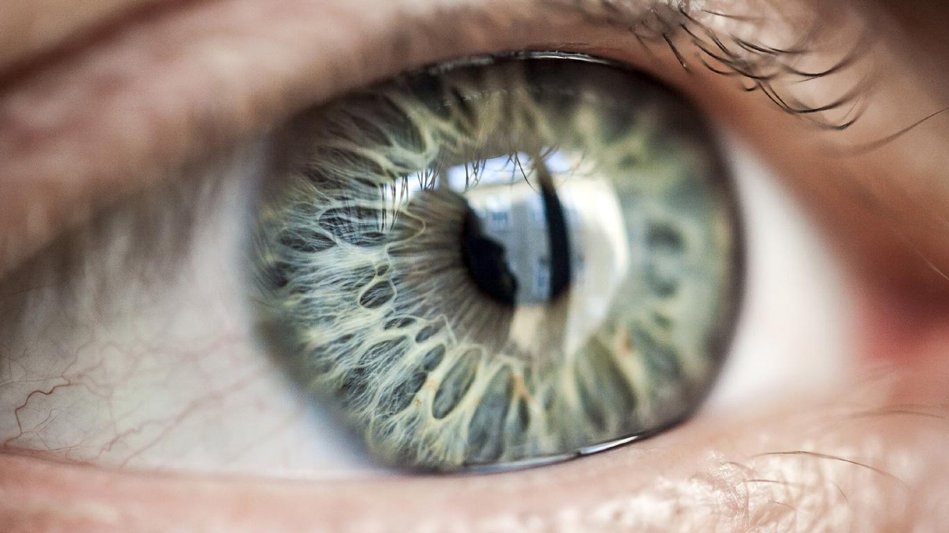 Makuladegeneration: Zerstörte Netzhaut