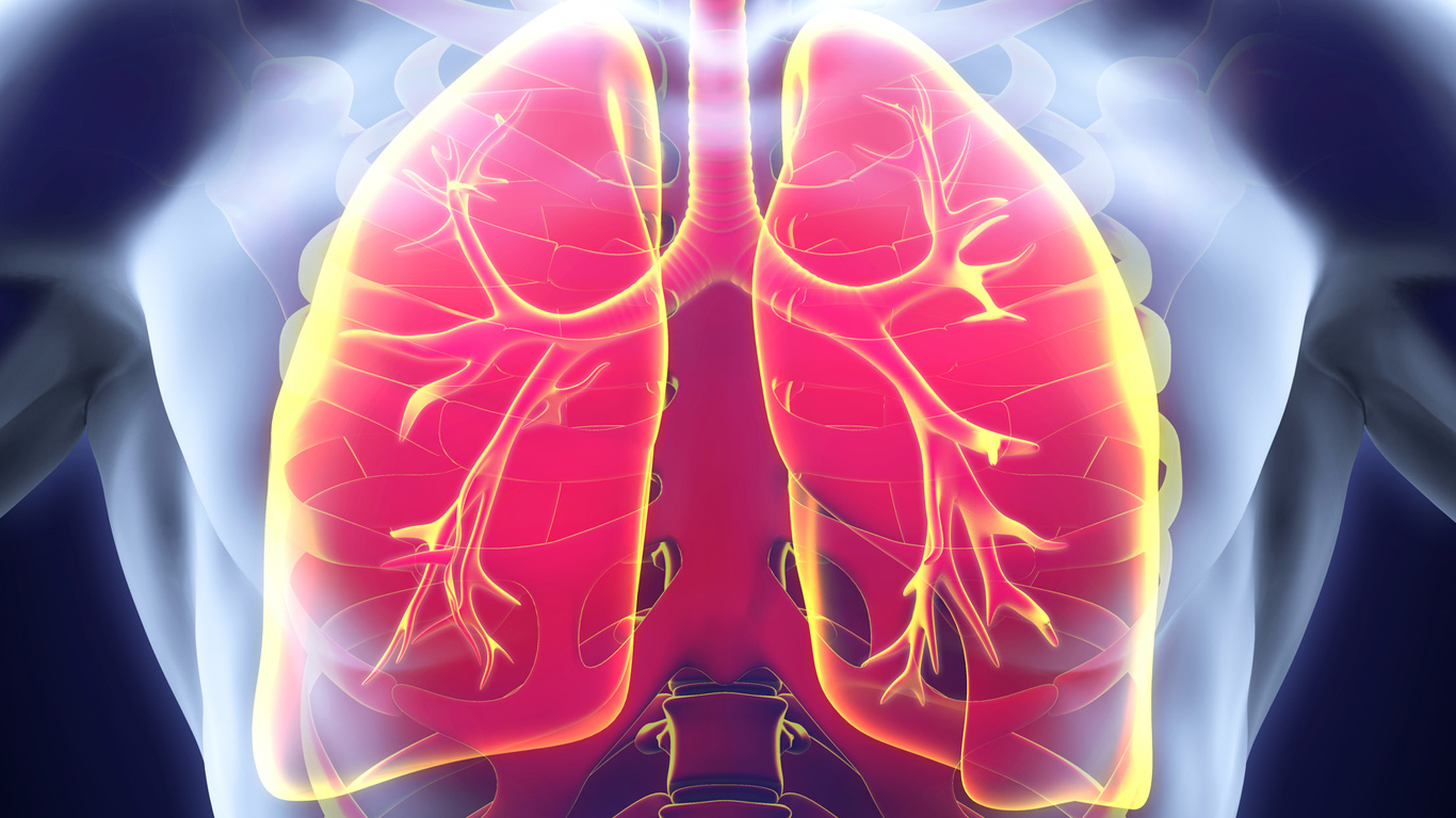 COPD: Diese Symptome deuten auf eine kranke Lunge hin
