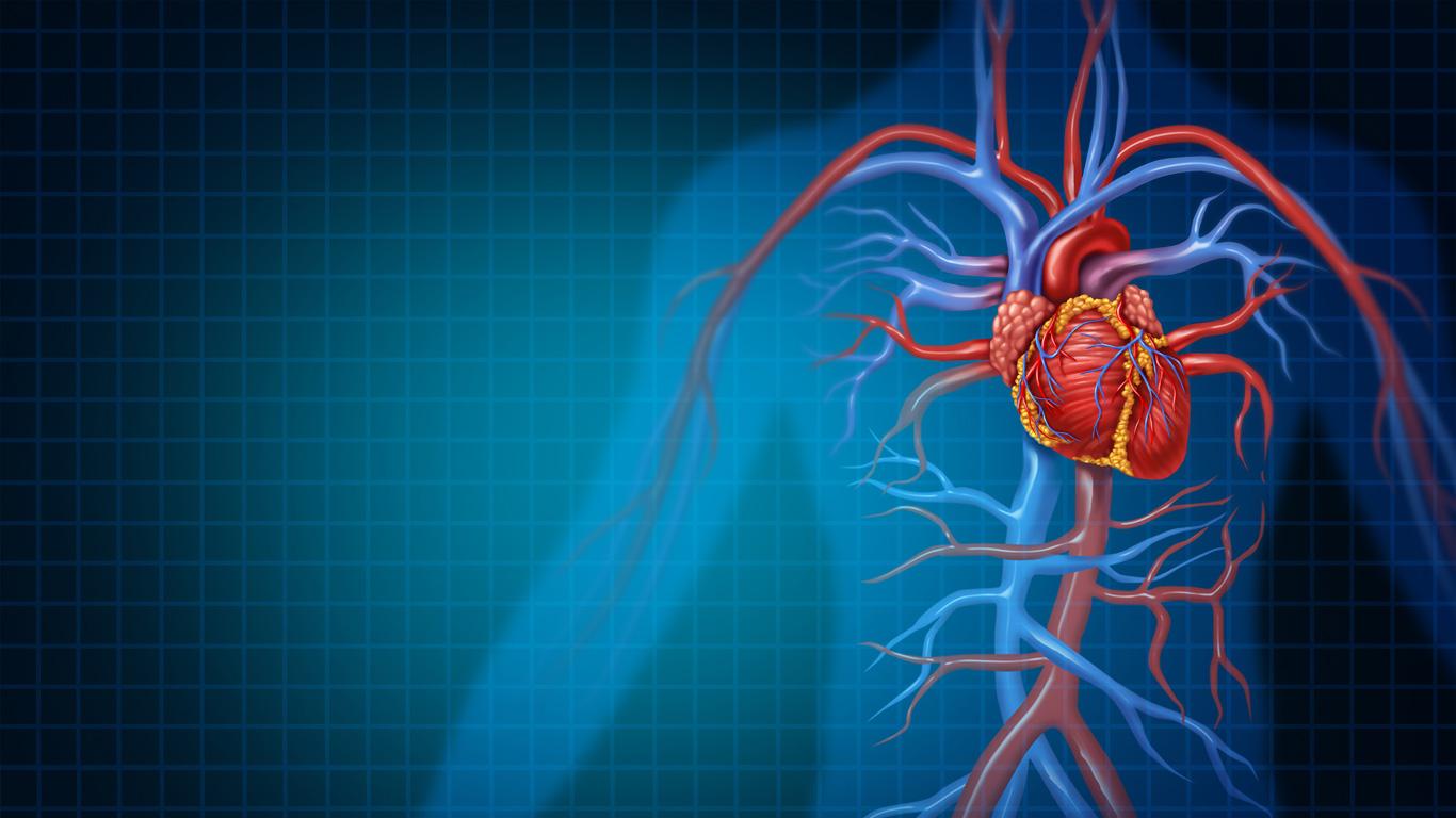 Herzinfarkt und Co.: So beugen Sie Gefäßerkrankungen vor