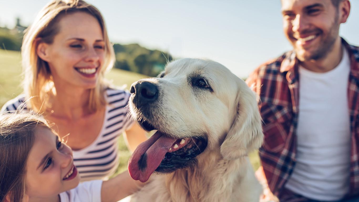 Psychische Gesundheit: Warum jeder ein Haustier haben sollte