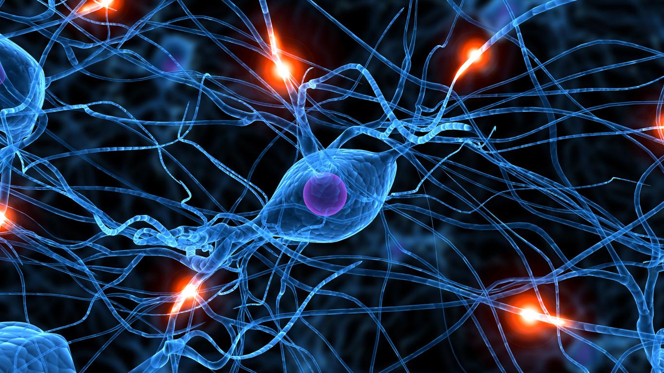 Schäden im Nervensystem