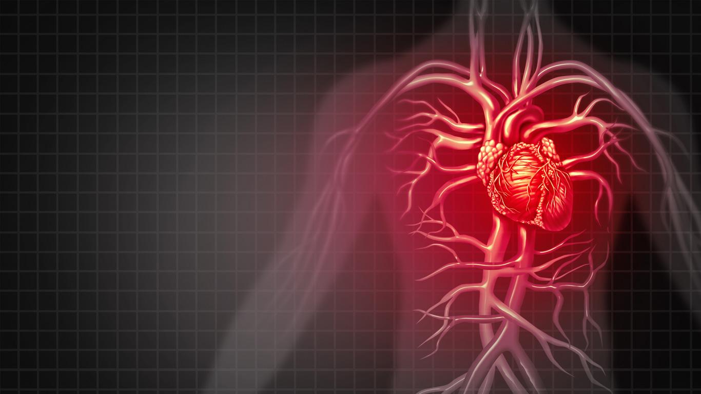 Herz und Kreislauf