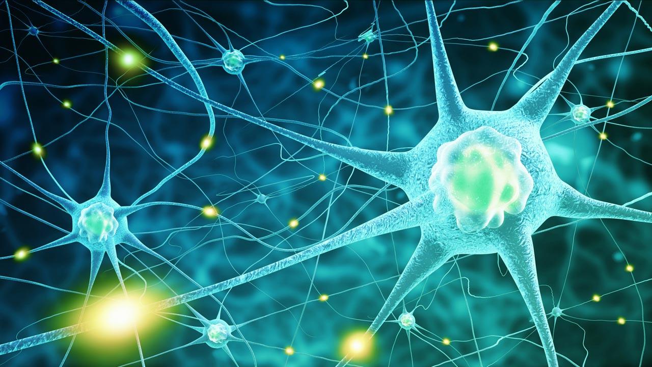 Parkinson oder Schlaganfall