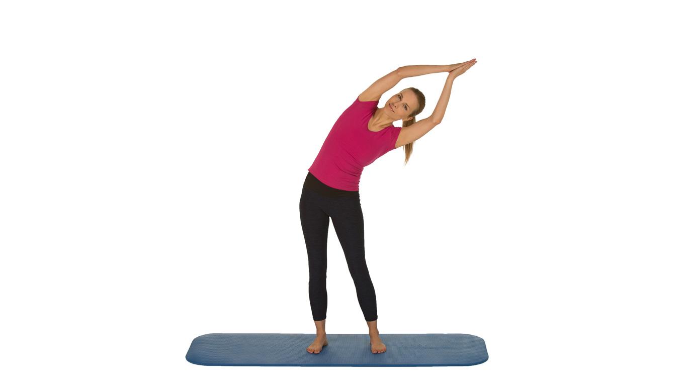 Übung 2: Dehnung von Rumpf und Rücken