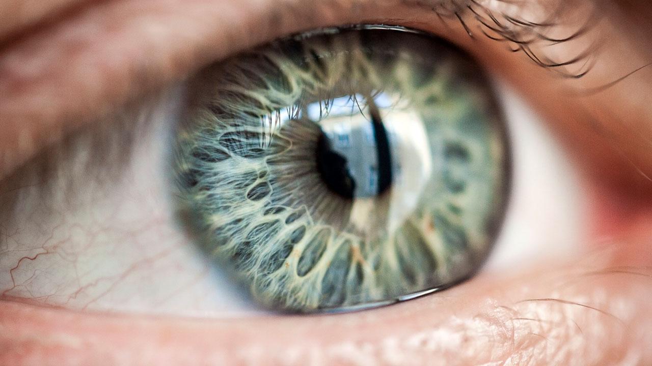 Spiegelt das Auge die Gesundheit des Gehirns?