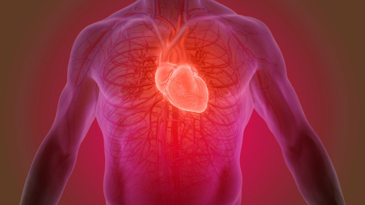 Kann sich ein kaputtes Herz wieder erholen?