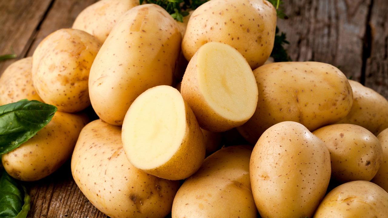 Wie weckt man den Jungbrunnen in der Kartoffel?